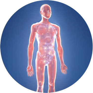 Chemokine-Related Body Wasting  Syndromes: Cancer Cachexia